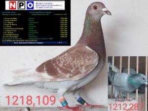 /wp-content/uploads/2021/09/Melun-Morlincourt-04-09.jpg